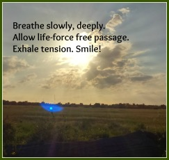 breath haiku