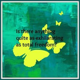 freedom haiku