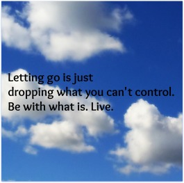 letting go haiku